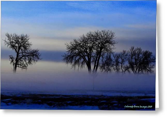 Snow Fog Greeting Card by Rebecca Adams