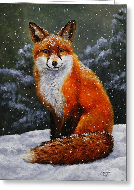Xmas Dog Greeting Cards - Snow Fox Greeting Card by Crista Forest