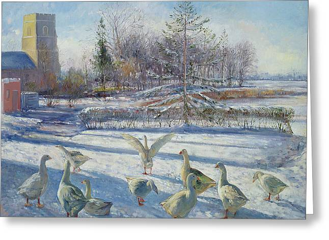 Modern Photographs Greeting Cards - Snow Geese, Winter Morning Greeting Card by Timothy Easton