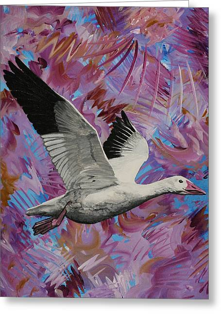 Snow Geese Paintings Greeting Cards - Snow Goose in Flight Greeting Card by Julianne Hunter