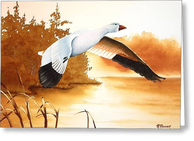 Snow Geese Paintings Greeting Cards - Backwater Cove Greeting Card by Richard Rooker