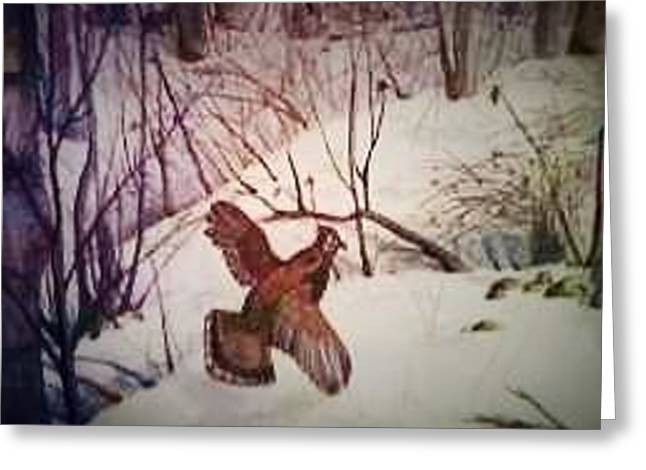 Hunting Bird Greeting Cards - Snow Grouse Greeting Card by Alexandria Weaselwise Busen