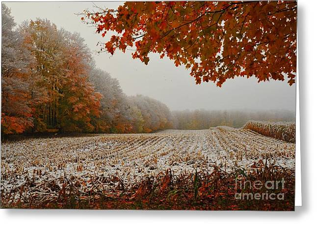 Pure Michigan Greeting Cards - Snow in Autumn 15 Greeting Card by Terri Gostola