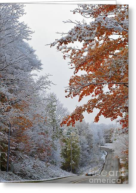 Rustic Greeting Cards - Snow in Autumn 22 Greeting Card by Terri Gostola
