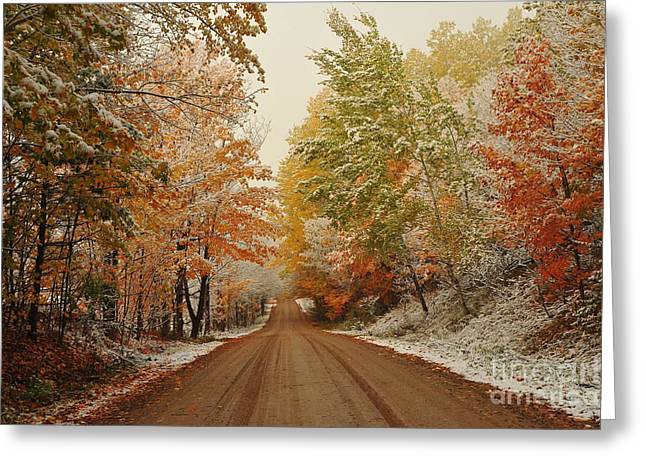 Best Sellers -  - Fall Trees Greeting Cards - Snow in Autumn 38 Greeting Card by Terri Gostola