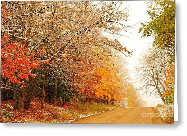 Trees Greeting Cards - Snow in Autumn 4 Greeting Card by Terri Gostola