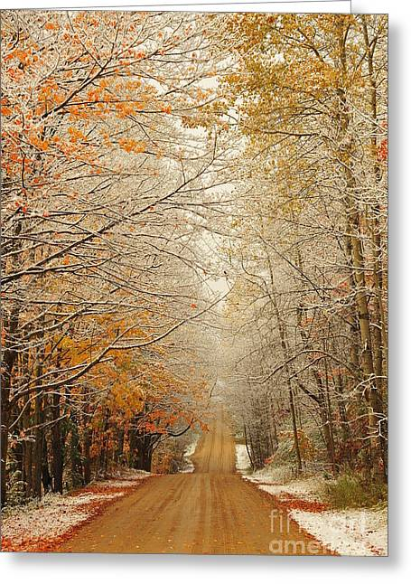 Rural Greeting Cards - Snow in Autumn 41 Greeting Card by Terri Gostola