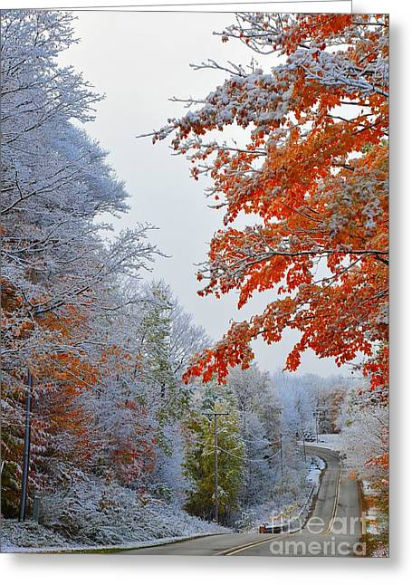 Scenic Greeting Cards - Snow in Autumn Greeting Card by Terri Gostola