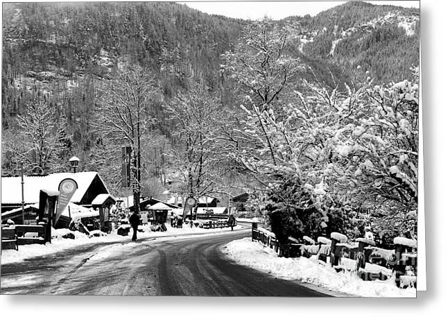 Snowed In Greeting Cards - Snow in Bavaria  Greeting Card by John Rizzuto