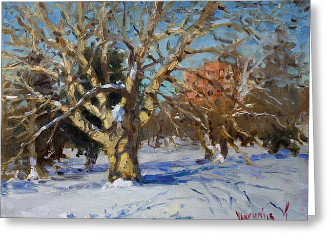 Snow In Goat Island Park  Greeting Card by Ylli Haruni