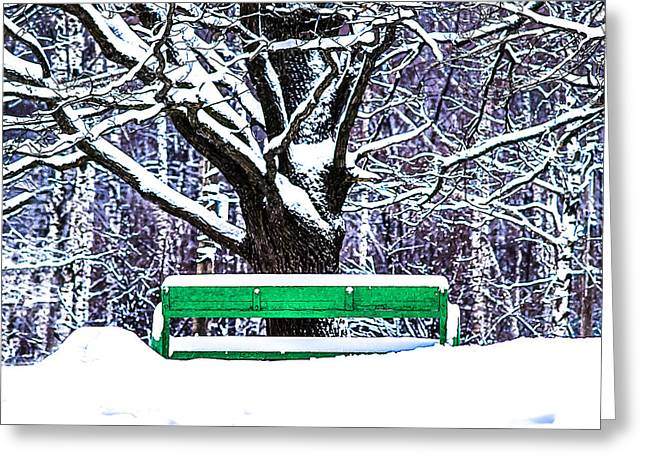 Snowstorm Greeting Cards - Snow In The Park Greeting Card by Alexander Senin