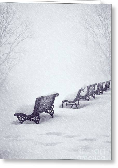 Forest Pyrography Greeting Cards - Snow in the Park Greeting Card by Jelena Jovanovic