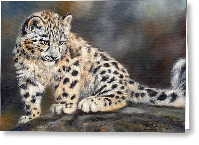 Leopards Greeting Cards - Snow Leopard Cub Greeting Card by David Stribbling