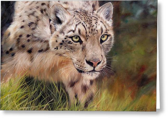 David Greeting Cards - Snow Leopard Greeting Card by David Stribbling