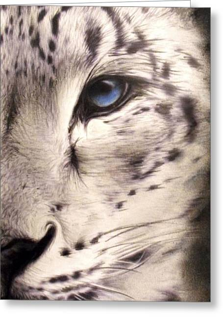 Soft Drawings Greeting Cards - Snow Leopard Greeting Card by Sheena Pike