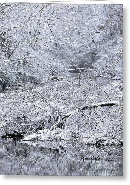 Late Fall Greeting Cards - Snow on Gauley River Greeting Card by Thomas R Fletcher