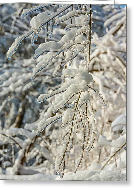 Storm Prints Photographs Greeting Cards - Snow On Ice Greeting Card by Steve Harrington