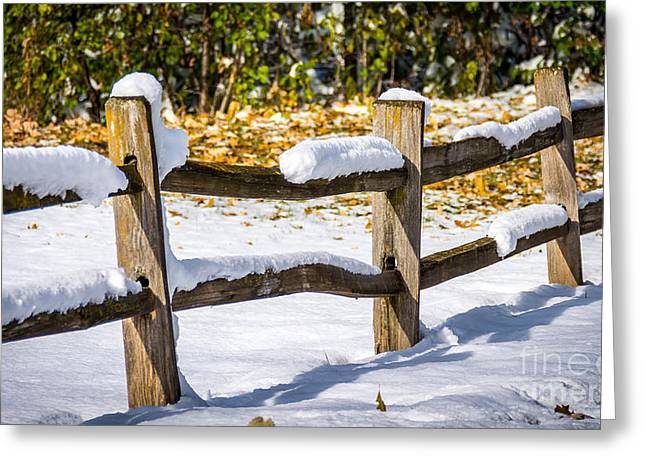 Split Rail Fence Greeting Cards - Snow On the Split Rail Fence Greeting Card by M Dale