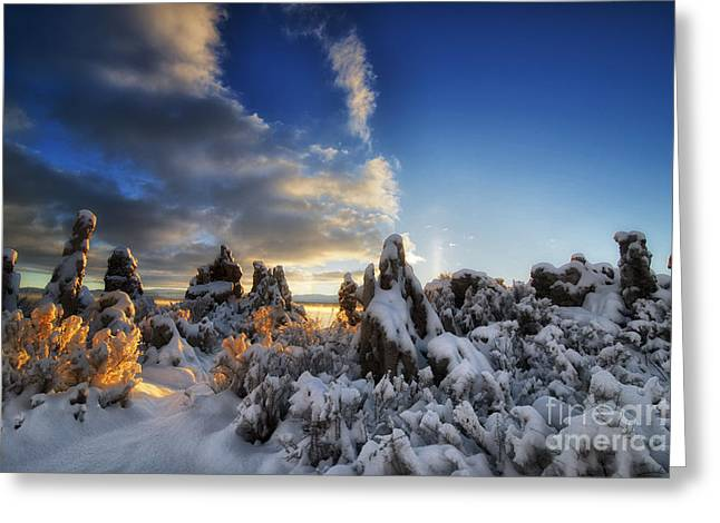 Forest Pyrography Greeting Cards - Snow on Tufa at Mono Lake Greeting Card by Peter Dang