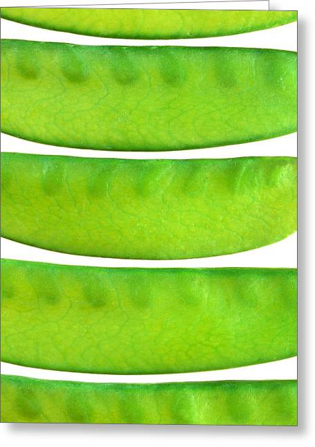Nitrogen Greeting Cards - Snow Peas Greeting Card by Jim Hughes