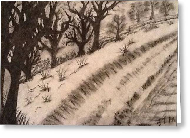Snow Drifts Drawings Greeting Cards - Snow Road  Greeting Card by Brad Miller