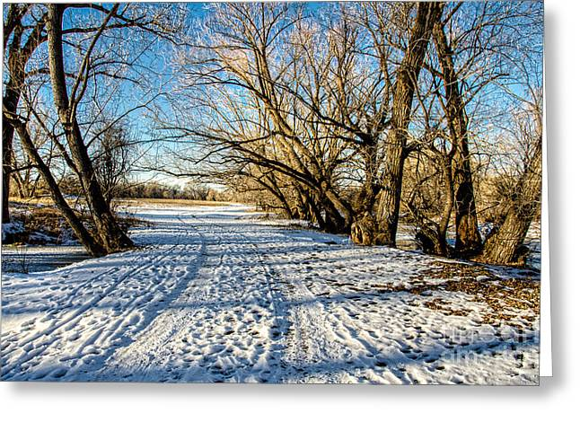 Snow Road Greeting Card by Baywest Imaging