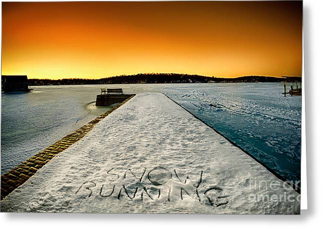 Stone Bench Greeting Cards - sNOw RUNNING Greeting Card by Mark Miller