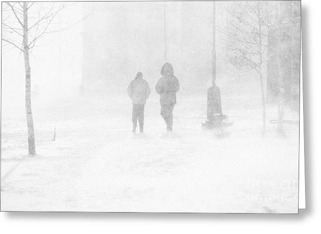 Windy Greeting Cards - Snow Storm Greeting Card by Rod McLean