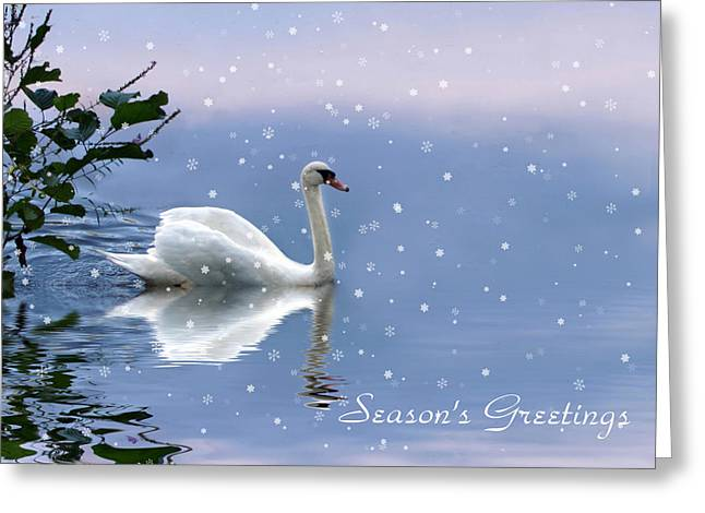 Swans... Digital Art Greeting Cards - Snow Swan  Greeting Card by Jessica Jenney
