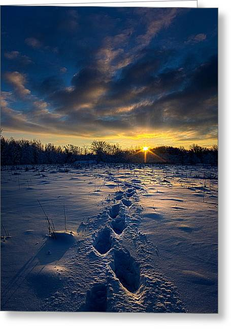 Geographic Greeting Cards - Snow Trek Greeting Card by Phil Koch