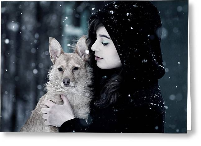 Dog Greeting Cards - Snow walk Greeting Card by Wojciech Zwolinski