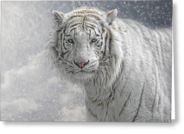 Tigris Greeting Cards - Snow White Greeting Card by Joachim G Pinkawa