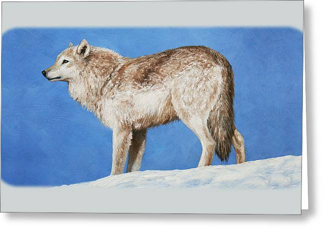 Arctic Wolf Greeting Cards - Snow Wolf iPhone Case Greeting Card by Crista Forest