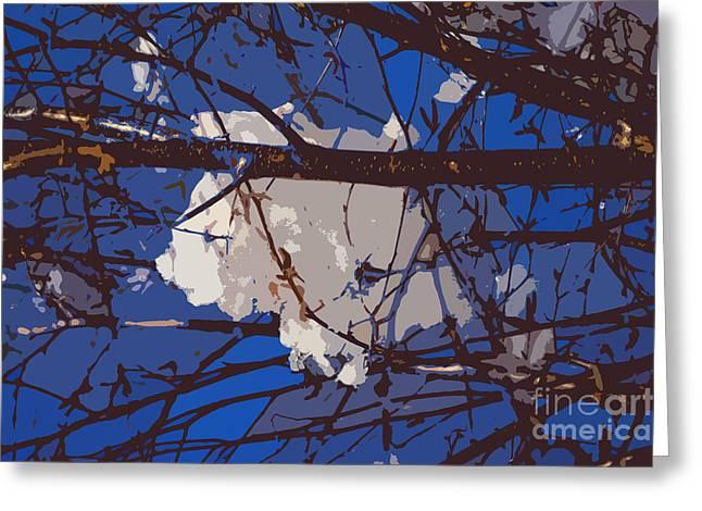 Rural Snow Scenes Greeting Cards - Snowball Greeting Card by Carol Lynch
