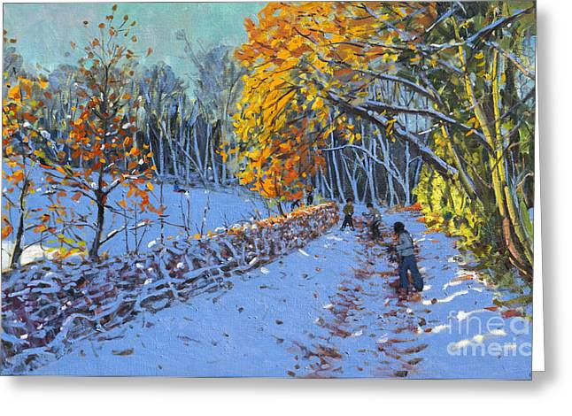 Snowball Greeting Cards - Snowballing Greeting Card by Andrew Macara