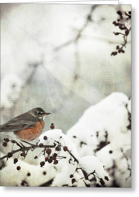 Robin Mixed Media Greeting Cards - Snowbird Greeting Card by Trish Tritz