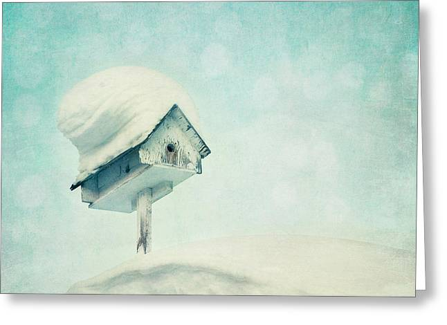 Snowbird's Home Greeting Card by Priska Wettstein