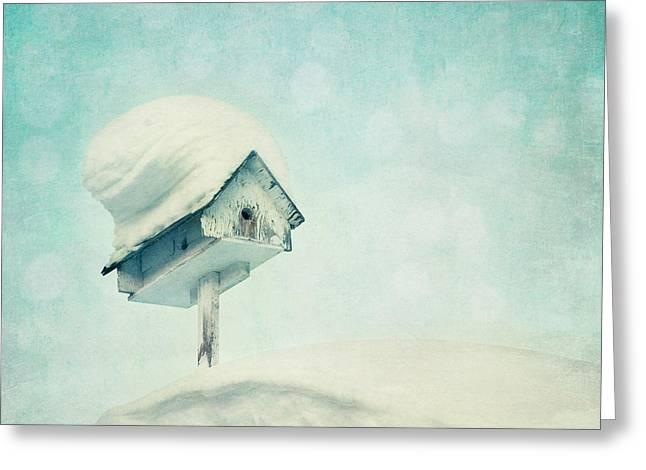 snowbird's home Greeting Card by Priska Wettstein