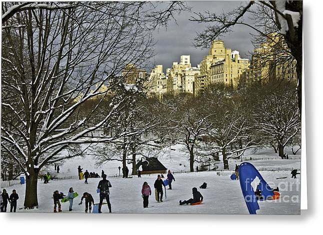 Blizzard New York Greeting Cards - Snowboarding in Central Park 2011 Greeting Card by Madeline Ellis