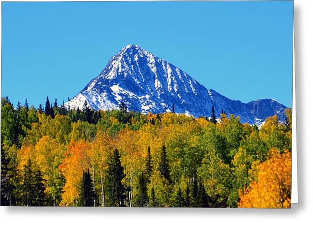 Snow Capped Greeting Cards - Snow Capped in Fall Greeting Card by David Lee Thompson