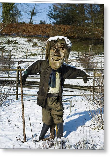 Wintry Photographs Greeting Cards - Snowcapped Scarecrow Greeting Card by Anne Gilbert