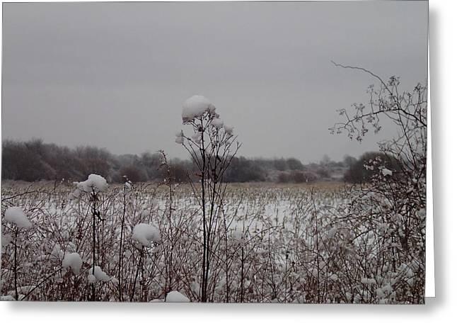 Robert Nickologianis Greeting Cards - Snowcaps Greeting Card by Robert Nickologianis