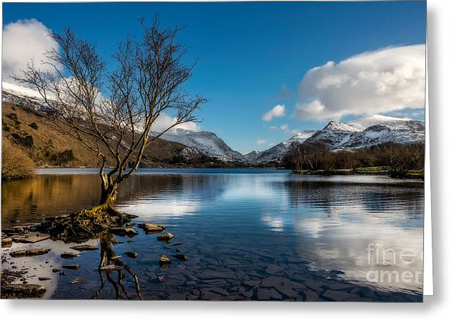Lakes Digital Greeting Cards - Snowdon And Padarn Lake Greeting Card by Adrian Evans