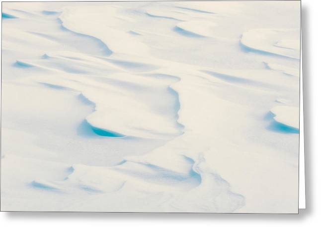 Drifting Snow Greeting Cards - Snowdrift Art Greeting Card by Joan Herwig