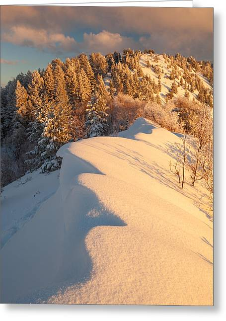 Snow Drifts Greeting Cards - Snowdrift Sunset Greeting Card by Rory Wallwork