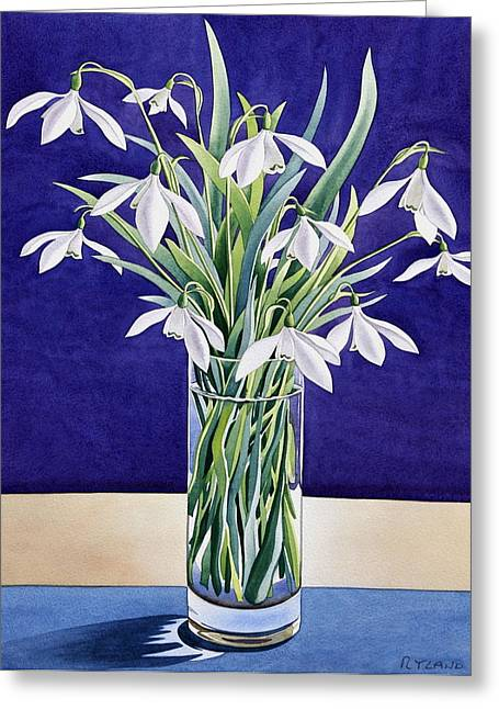 Recently Sold -  - Flower Blossom Greeting Cards - Snowdrops  Greeting Card by Christopher Ryland