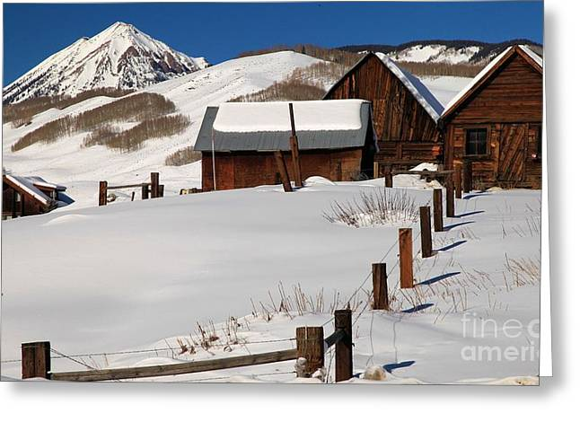 Snowed In Greeting Card by Adam Jewell