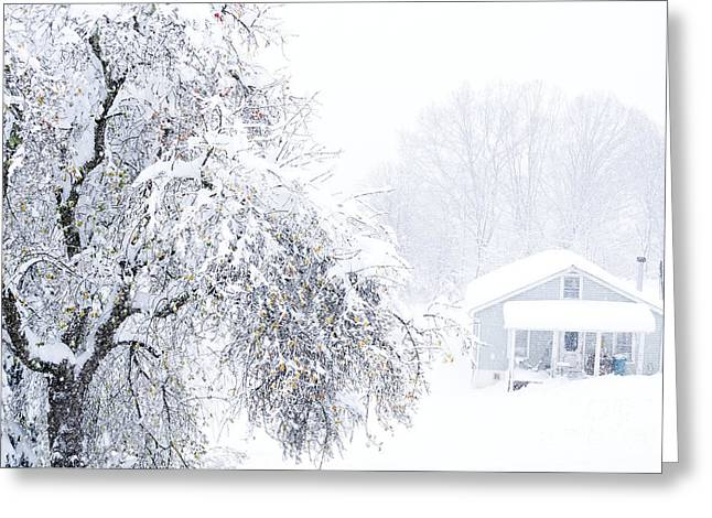 Virginia Snow Greeting Cards - Snowed in Country Home Greeting Card by Thomas R Fletcher