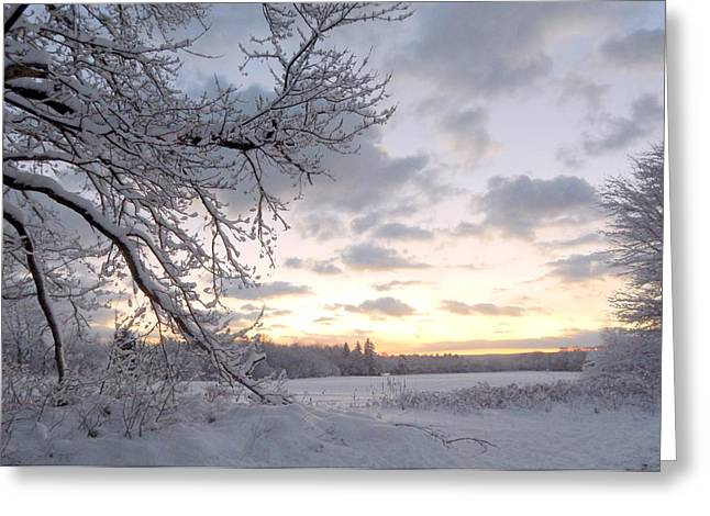 Annapolis Valley Greeting Cards - Snowfall Greeting Card by Karen Cook