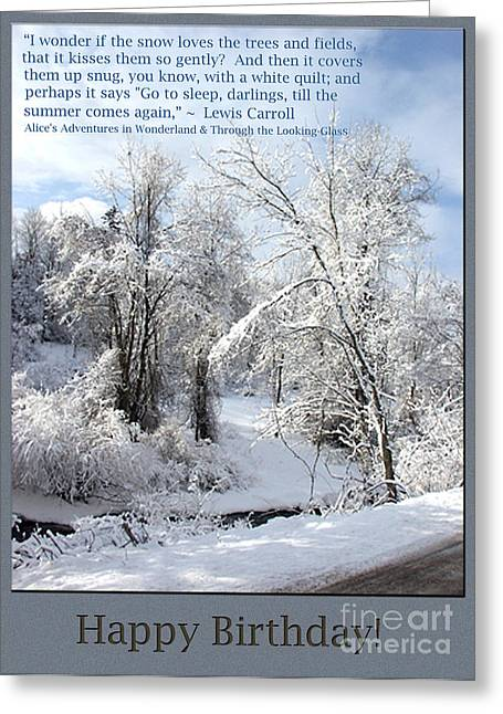 Dantzler Greeting Cards - Snowfall Photo Birthday Greeting Greeting Card by Andrew Govan Dantzler